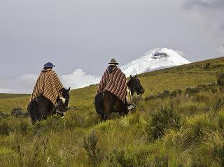 Ecuador highlands