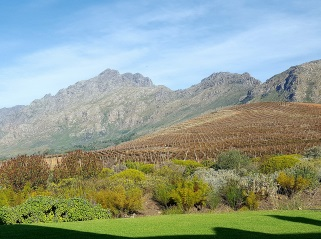 Cape Town, Table Mountain, Kirstenbosch Gardens, South Africa, Travel