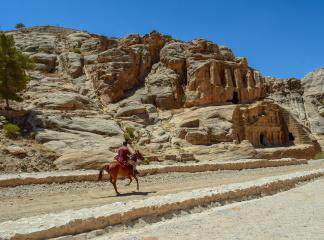 petra travel Jordan horse